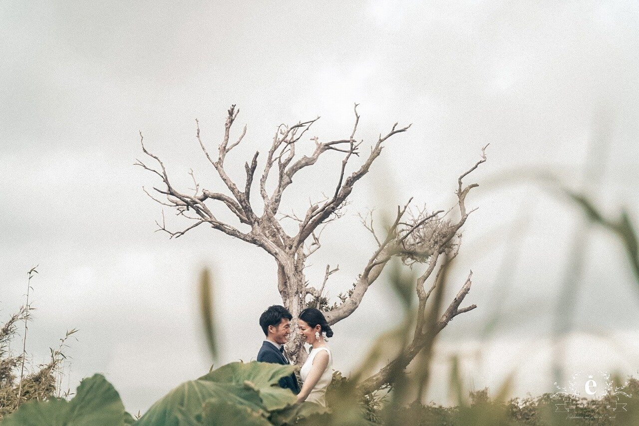 神奈川県 三浦半島 城ヶ島 フォトウェディング フォト婚 前撮り ロケ撮影 おしゃれ ドライフラワー ナチュラル 結婚 茨城 水戸 エクラ
